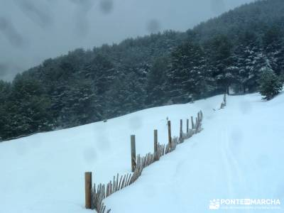 Raquetas de Nieve - Puerto de Cotos; senderos gr; turismo en la sierra de madrid;equipamiento para h